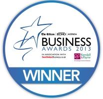 Environmental Business Award