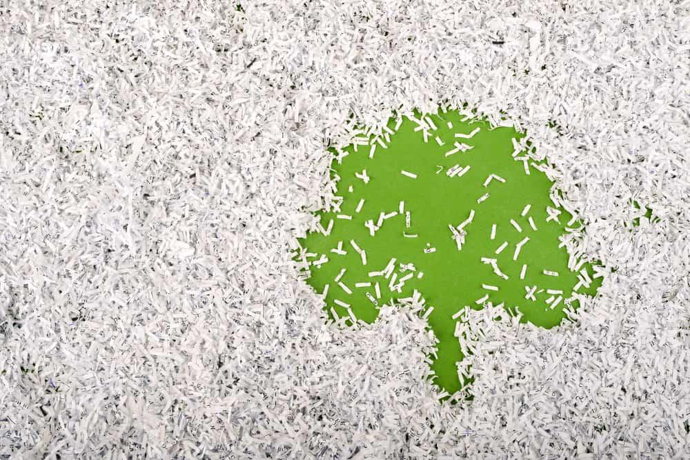 Eco-friendly Paper Shredding